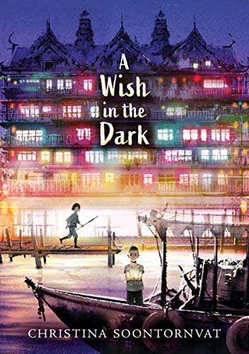 A Wish in the Dark cover